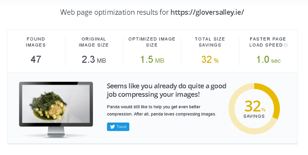 screenshot from TyniPNG about web optimisation results for Gloversalley.ie