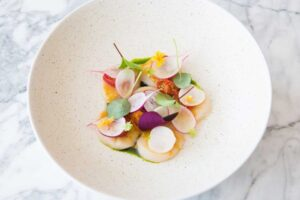 scallop ceviche with seeds, radish and dill