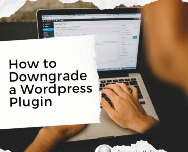 how to downgrade a wordpress plugin
