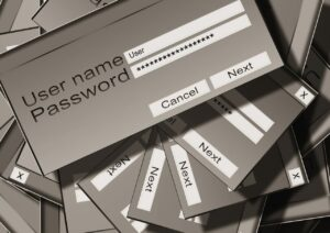 password fields grey